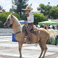 Feria Mexicana 2017